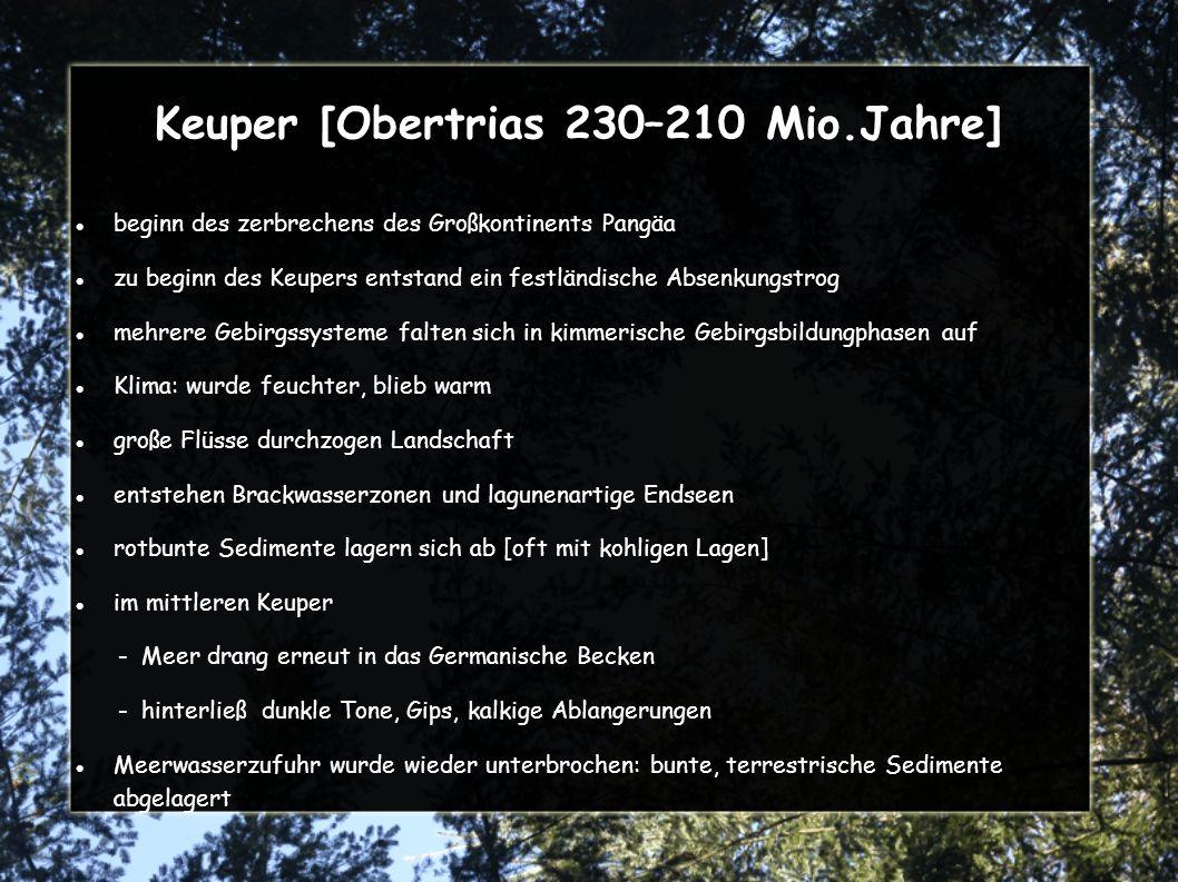 Keuper [Obertrias 230–210 Mio.Jahre]